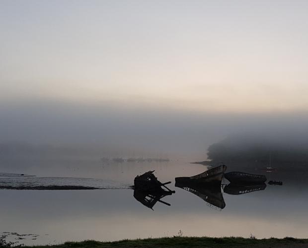 un regard qui se partage - Kerhervy- petit matin de brume - Magali Willems